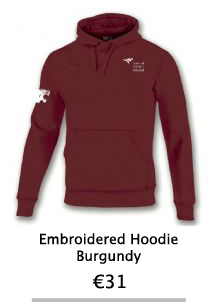 Embroidered Burgandy Hoodie - NCI Shop