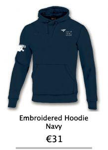 Embroidered Navy Hoodie - NCI Shop